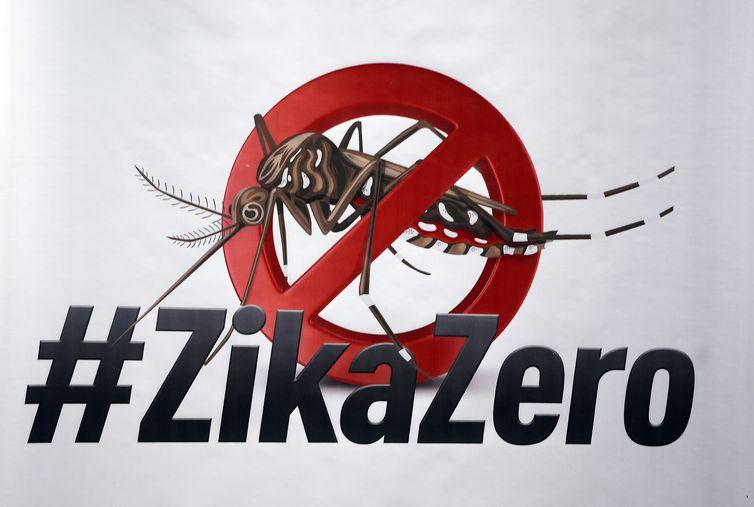 Rousseff Promueve Campaña De Lucha Contra El Mosquito Aedes