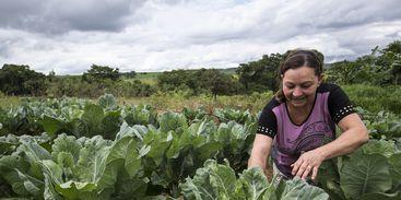 Foto: Ubirajara Machado/Ministério do Desenvolvimento Social