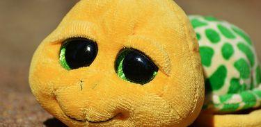 Tartaruga de pelúcia