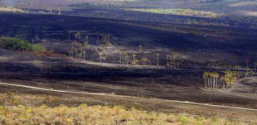 Parque Nacional da Chapada dos Veadeiros após incêndio