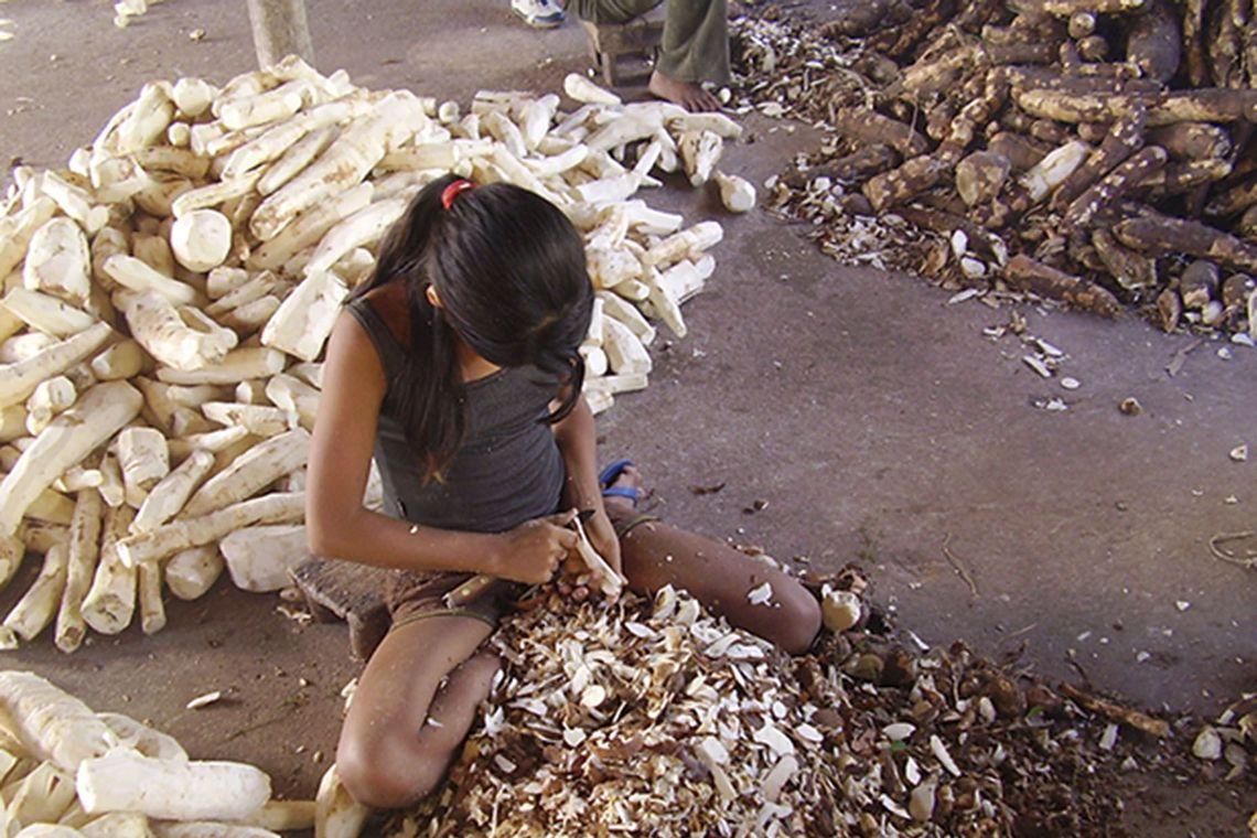 Ministério do Trabalho combate o Trabalho Infantil.