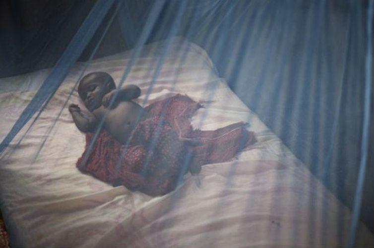 Segundo a OMS, entre 2000 e 2015 o número de mortes causadas pela malária caiu 62% e o número de casos teve uma redução de 41%