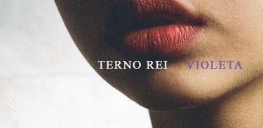 """Fabrício Rocha comenta """"Violeta"""", novo álbum da banda Terno Rei"""