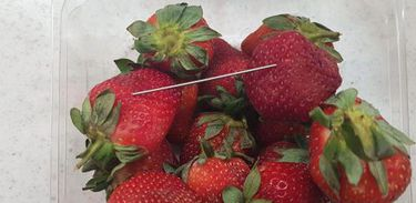 Supplied undated handout image obtained September 14, 2018 of a thin piece of metal seen among a punnet of strawberries in Gladstone. AAP/Queensland Police/Handout via REUTERS  ATTENTION EDITORS - THIS IMAGE WAS PROVIDED BY A THIRD PARTY. NO