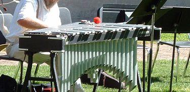 Vibrafone