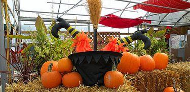 Estudantes podem perder Halloween em cidade capixaba