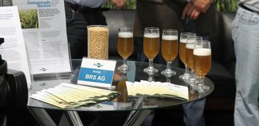 Cerveja artesanal a base de arroz