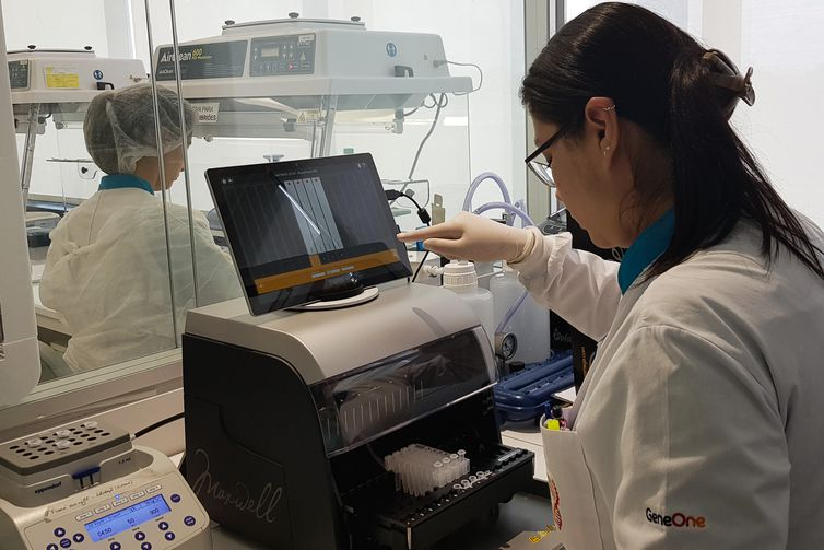 Procedimento de extração de DNA