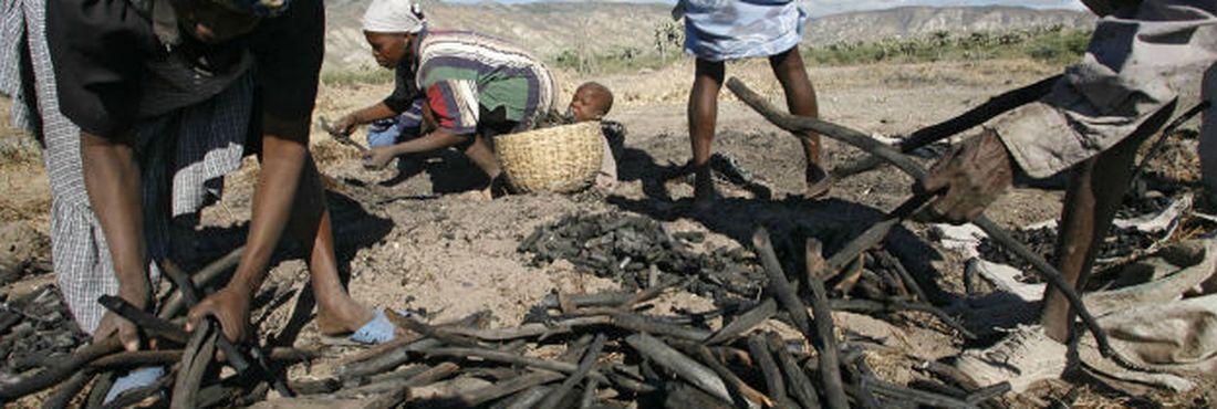 3,6 milhões de haitianos sofrem com insegurança alimentar