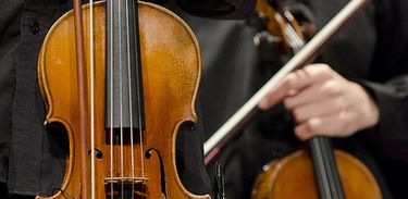 Violino, música, instrumento musica, erudito, orquestra, músicos