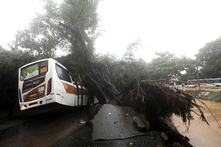 Ônibus embaixo de árvores arrancadas pelas fortes chuvas no bairro do Leblon, no Rio de Janeiro