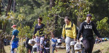 Para celebrar o Dia da Mata Atlântica (27/05), o evento Viva a Mata terá uma série de ações para chamar a atenção da sociedade sobre a importância da conservação desta floresta.