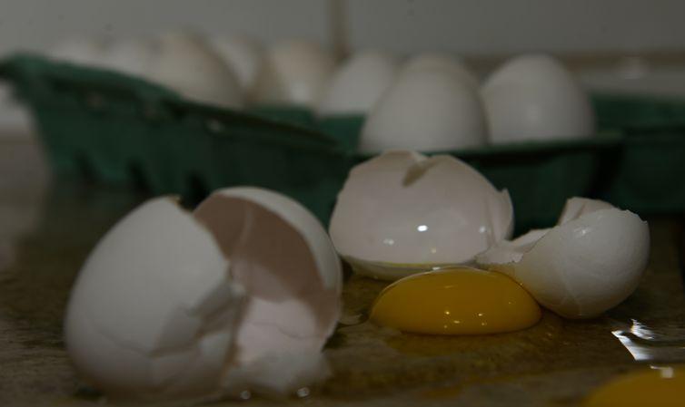, Produção de leite sobe e a de ovos bate recorde, revela pesquisa