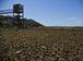 Remanso (BA) - Com a falta de chuva na nascente do Rio São Francisco, o reservatório de Sobradinho vive a maior seca de sua história (Marcello Casal Jr/Agência Brasil)