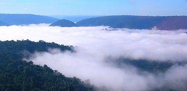 Floresta Amazônica, Amazônia