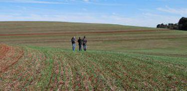 Práticas de conservação evitam a degradação do solo