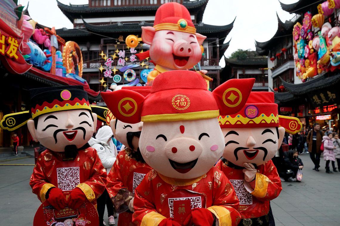 Ano Novo, Chinês, Porco