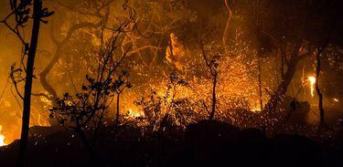 incendio_chapada_dos_veadeiros.jpg