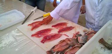 Curso de manipulação do pescado em Tabatinga
