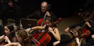 Orquestra, música, músicos, violoncelo, instrumentos musicais