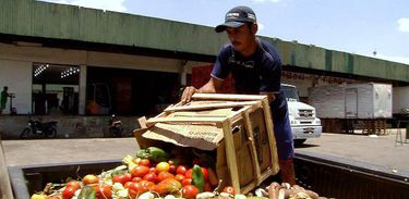 O programa Caminhos da Reportagem, da TV Brasil, aborda o desperdício na cadeia de produção de alimentos