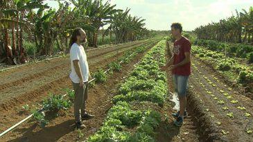 Cláudio Jacinto, mestre em sustentabilidade, e Idalércio Barbeta, produtor de orgânicos