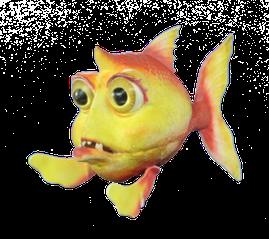Cotinha é uma piranha