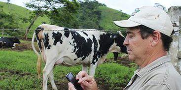 Foto: Embrapa/Divulgação