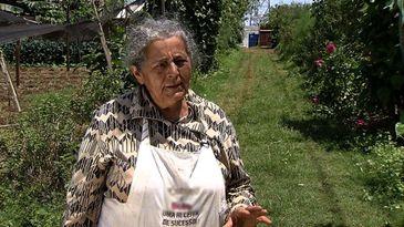Dona Sebastiana voltou a trabalhar com agricultura depois de se aposentar, graças ao projeto Cidades sem fome