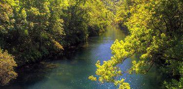 Meio Ambiente / Javier Pais/ Flickr /CC BY 2.0