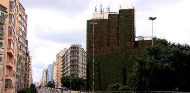 Os jardins verticais no Minhocão só melhoram a saúde e abaixam os níveis de poluição no centro de São Paulo