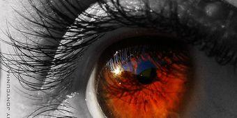 1b81a765cc301 Como funciona o olho humano  Portal EBC