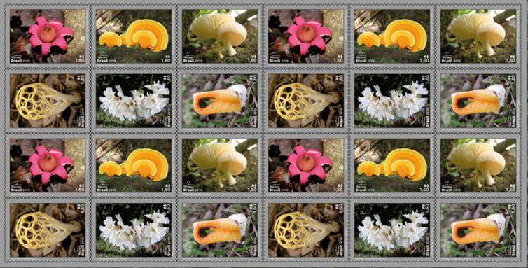 folha_fungos, correios, selo
