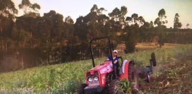 Cafeicultora dirigindo trator e arando a terra no Paraná