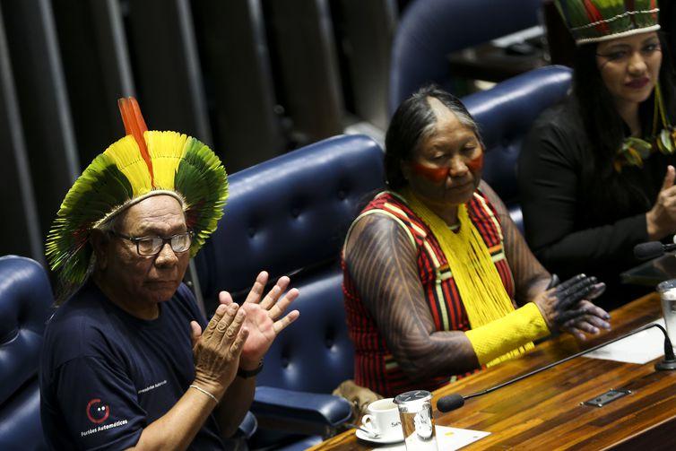 Brasília:  No Dia do Índio, Senado faz sessão especial para homenagear os povos indígenas.