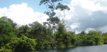 Cheia do rio Solimões