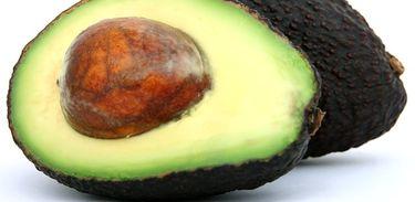 Agrônomo fala da cultura do Avocado, fruta irmã do abacate