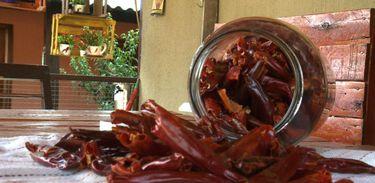 Pimenta é rica em nutrientes para o bom funcionamento do corpo
