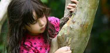 Criança, natureza, árvore