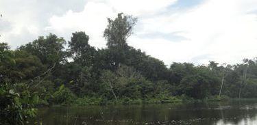 Parque Nacional Jamanxim