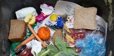 Futurando mostra iniciativas contra o desperdício