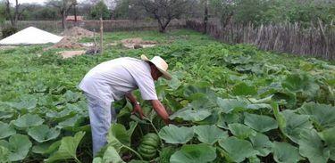 Agricultor trabalhava na terra do patrão. Hoje tem sua terra