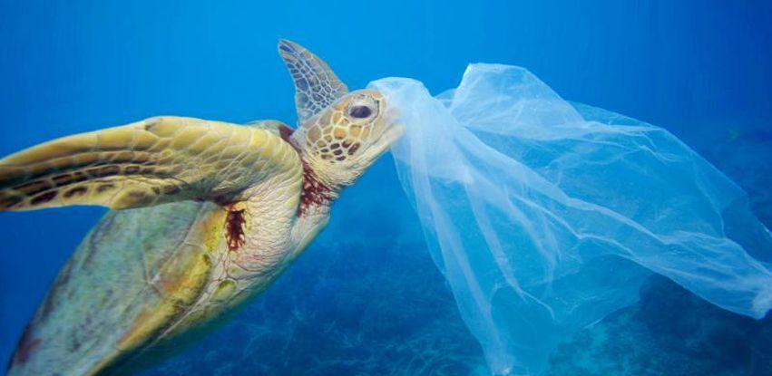 Se nada for feito, em 2050 teremos um volume maior de plástico do que de peixes nos oceanos