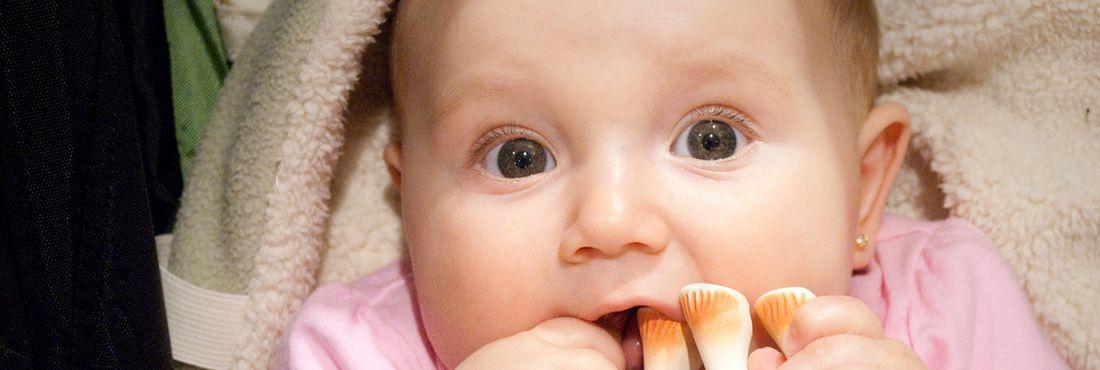 Treino de curta duração melhora destreza manual de bebês