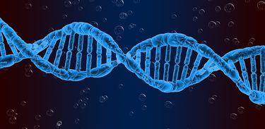 Citologia e biotecnologia são conteúdos recorrentes do Enem