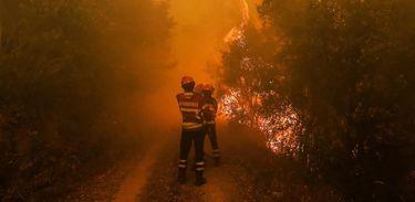 A agência especializada da ONU alerta para novas ondas intensas de calor este ano na Europa, que podem fomentar incêndios, como o ocorrido recentemente em Portugal