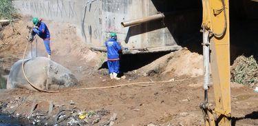 Homens trabalham no 'desmonte' de pedras menores, no Morro da Boa Vista, em Vila Velha