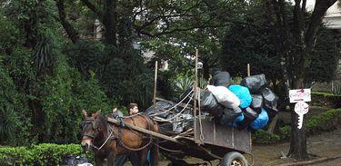 Carroça em Porto Alegre