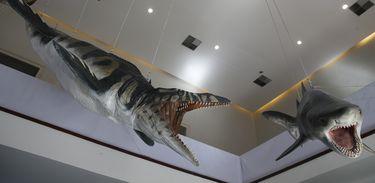 Representação de mosassauro, lagarto marinho do período Cretáceo na exposição Quando Nem Tudo era Gelo,novas Descobertas no Continente Antártico,  a primeira do Museu Nacional da UFRJ após o incêndio, abrigada no Museu Casa da Moeda do Brasil.