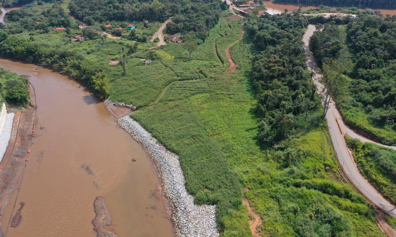 Processo de reflorestamento da mesma área em 2021